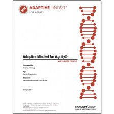 Adaptive Mindset - Agility Multi-Rater Profile