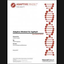 Adaptive Mindset - Agility Multi-Rater Profile